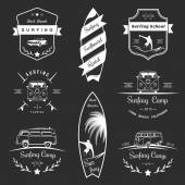 Vector Badges and Logos Surfing