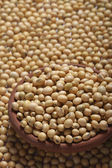 Soyabean - a legume often used like vegetable.