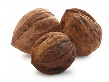 Whole shelled walnuts
