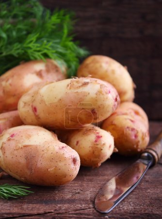 Fresh young potatoes