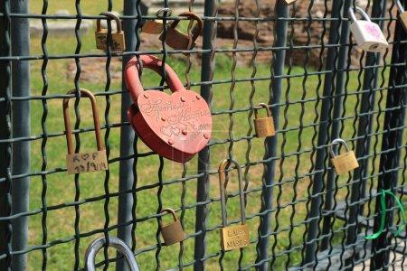Locks hanging on the fence