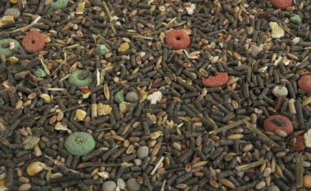 Dry food for rabbits and other rodents