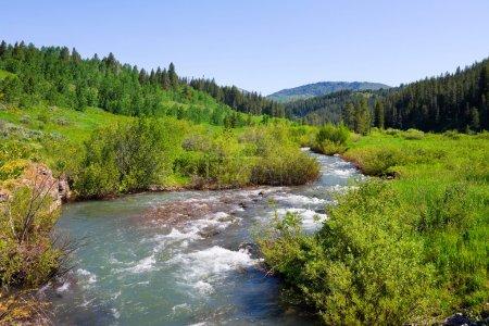 Photo pour Campagne avec un ruisseau dans l'État de l'Idaho - image libre de droit