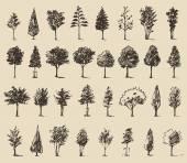 Trees sketch set,