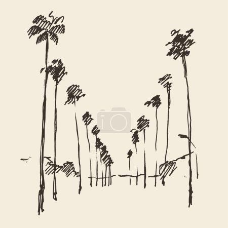 Hand drawn Los Angeles  city