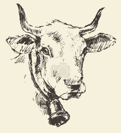Illustration for Cow head with bell dutch cattle breed vintage illustration engraved retro style hand drawn sketch - Royalty Free Image