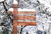 Wooden Sign in Forest, covered with snow