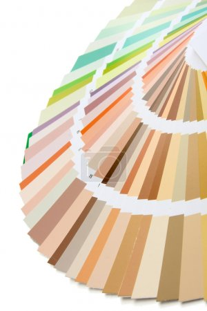 Close-up of a color palette on white background