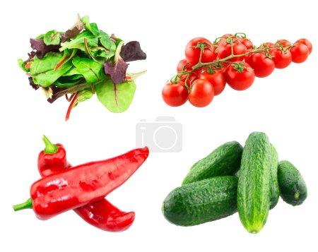 Foto de Hoja de ensalada roja, acelga roja espinaca, pepinos, tomates Cherry en rama y Ramiro pimientos aislado en blanco - Imagen libre de derechos
