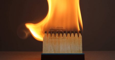 Matchsticks burns with a flame and bends upward bl...