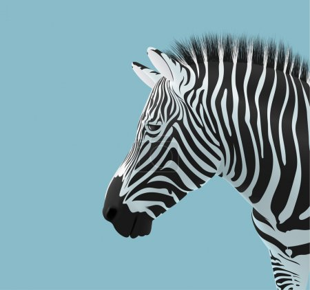 Illustration for Volume of a Zebra head on a blue background - Royalty Free Image