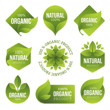 Illustration for Set of bright green labels with leaves for organic, natural, eco or bio products - Royalty Free Image