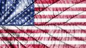 United states flag. Leaf texture.