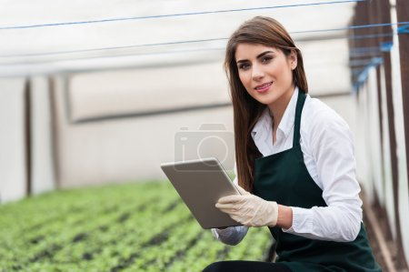 Female researcher technician studying with a tablet and gloves, dressed in office clothes,office shirt and apron in all withe greenhouse.