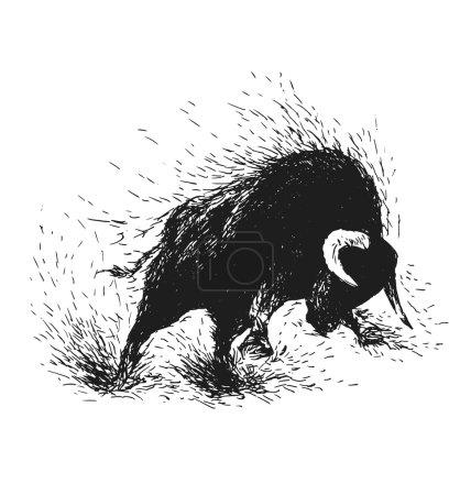 Illustration pour Dessin à la main d'un taureau furieux. Illustration vectorielle - image libre de droit