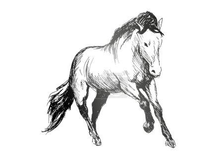 Illustration pour Croquis à la main d'un cheval de course - image libre de droit