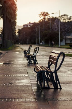Empty bench after rain.
