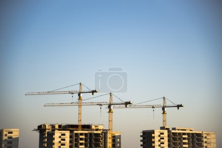 Photo for Construction scene with three cranes on seem and clear sky. - Royalty Free Image