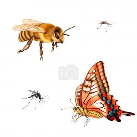 Pretty bee, butterfly and swallowtail