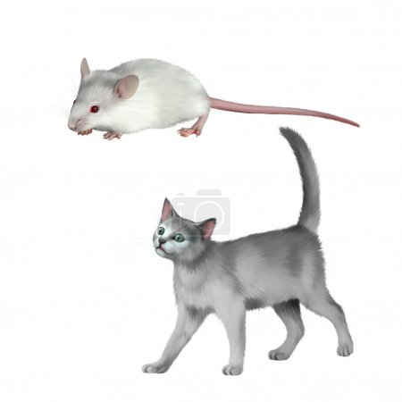 Mouse and gray kitten