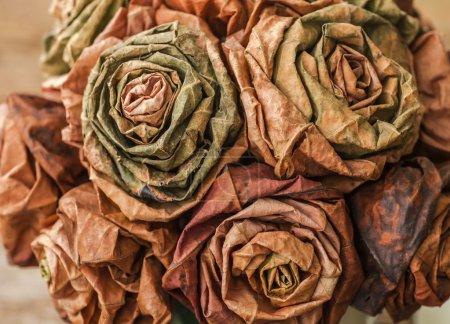 dry paper roses