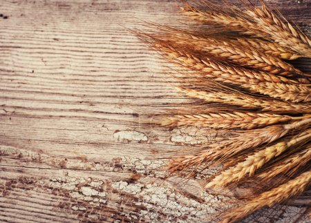 Photo for Spikelets of wheat on old wooden table background - Royalty Free Image