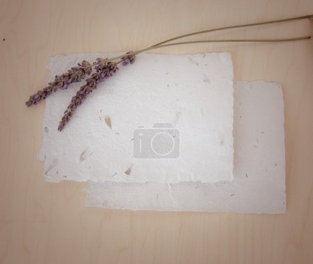 Background with lavender and papers