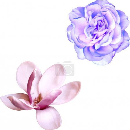 Magnolia and blue rose