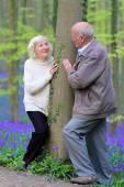 Loving senior couple walking in beautiful forest