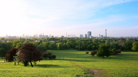 London cityscape from Primrose Hills park