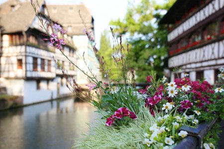 Beautiful Strasbourg in summer time