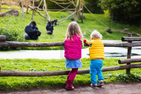 Kids watching animals at the zoo