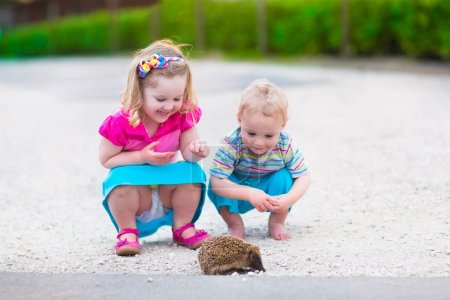 Photo for Kids playing with a hedgehog. Children and pets. Little girl and adorable baby boy play with a wild animal. Preschooler watching animals outdoors in summer. - Royalty Free Image