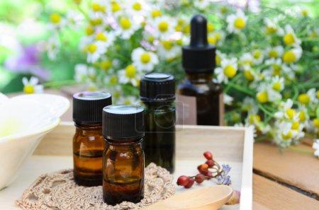 Photo pour Huiles essentielles aux herbes pour le traitement d'aromathérapie - image libre de droit