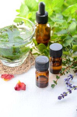 Photo pour Huiles essentielles avec boisson à base de plantes pour le traitement d'aromathérapie - image libre de droit