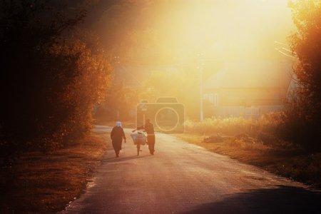 Photo pour Couple âgé avec sac à vélo marchant le long de la route dans la belle lumière du soir. Paysage rural avec agriculteurs. Rétrospection - image libre de droit
