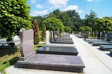 Tombstones in the cemetery