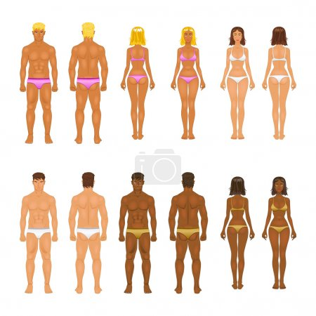 Illustration for Vector dolls, young woman and guy in underwear. Body templates - Royalty Free Image