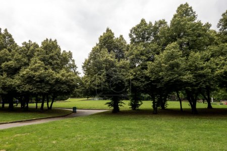 Photo for View of green city park with trees and trail - Royalty Free Image