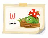Illustration of animal alphabet letter W for worm illustration vectorr