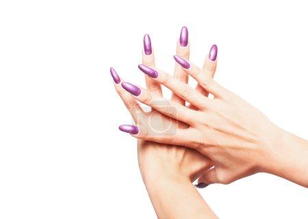 Woman hands wearing purple varnish 2