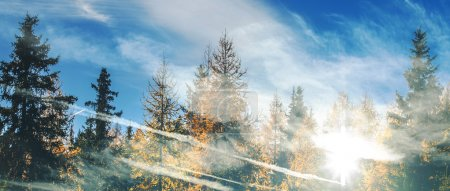 Double exposure of autumnal treescape and cloudscape letterbox