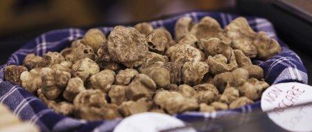 Italian truffles stand letterbox