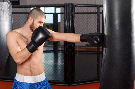 Sportsmen kicking punching bag