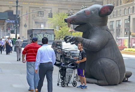 Inflatable rat known as Scabby the Rat, used by a Labor Union