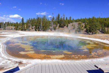 Boardwaks in Yellowstone National Park, Wyoming USA