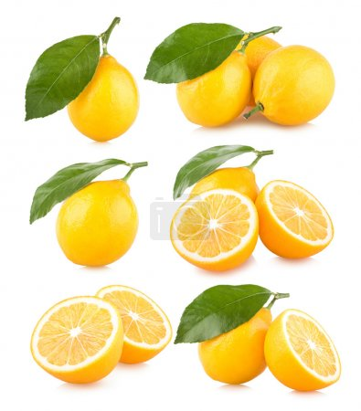 Photo for Set pf 6 lemon images on white background - Royalty Free Image
