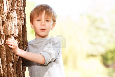 Little boy emerging from behind tree