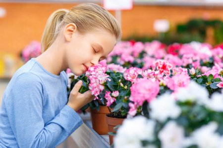Little girl inhaling flower scent.