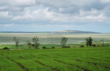 Beautiful southern landscape